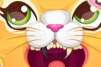 Dentiste pour chats