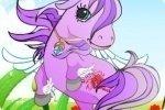 Look du poney