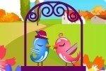 Oiseaux d'amour