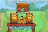 Protéger les oranges 2